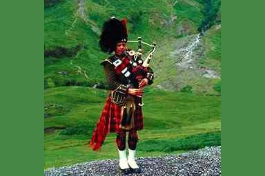 Not simple, Piper piping perri
